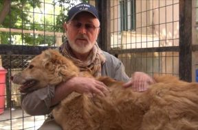 Peter Egan meets Joe, the most amazing rescue dog during Wetnose trip to Kabul