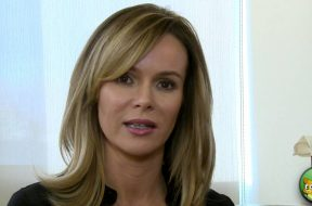 Wetnose Animal Welfare Appeal by Amanda Holden