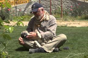 Peter Egan and Sash during Wetnose trip to Nowzad Animal Shelter, Afghanistan